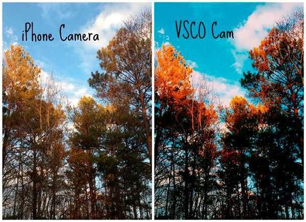 VSCO онлайн для компютера як завантажити, встановити?